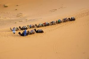 Meditative Wüstenreise