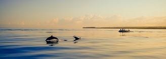 Meditationsreise Kanarische Inseln Vallen - Gran Rey